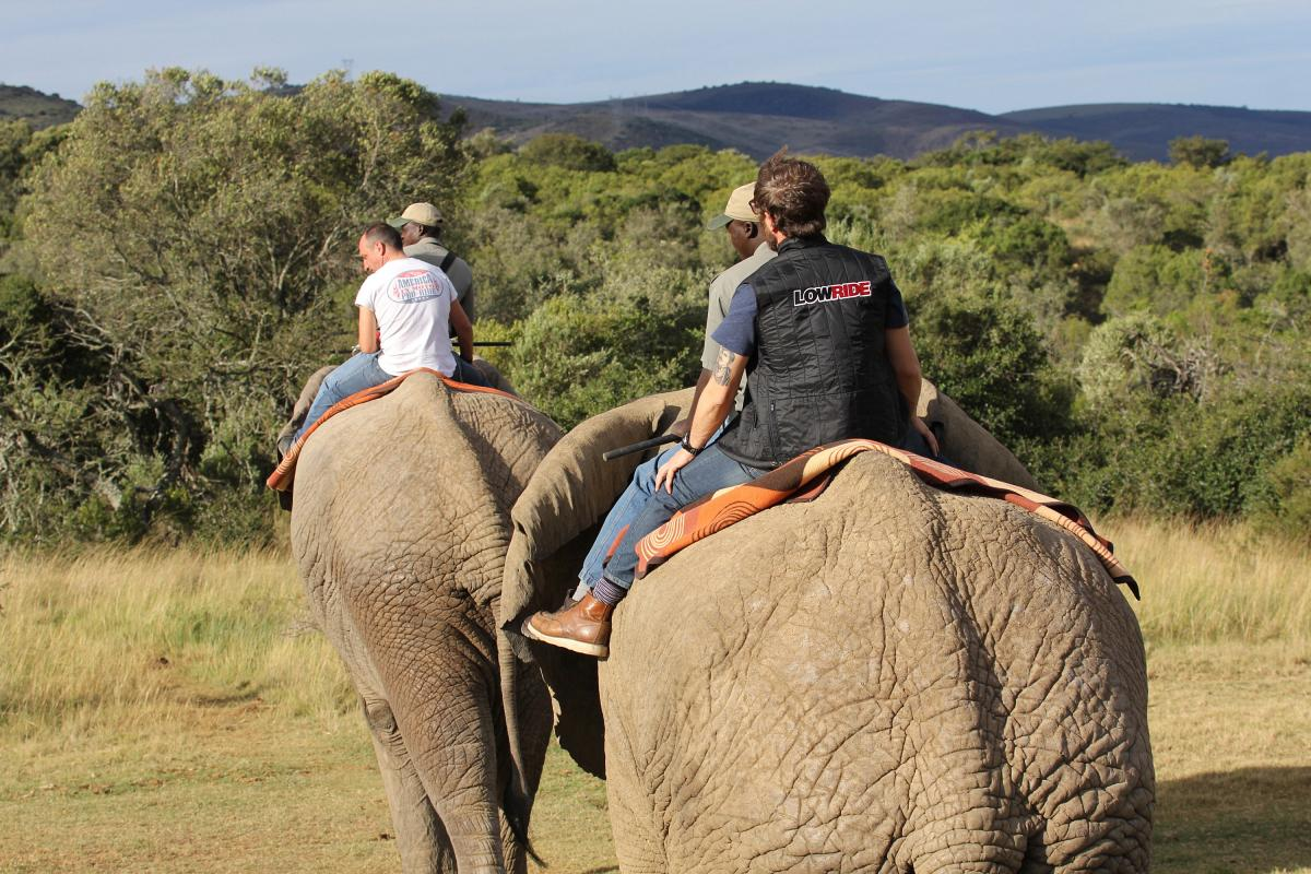 avventure-in-moto_sudafrica-south-africa-pride-18